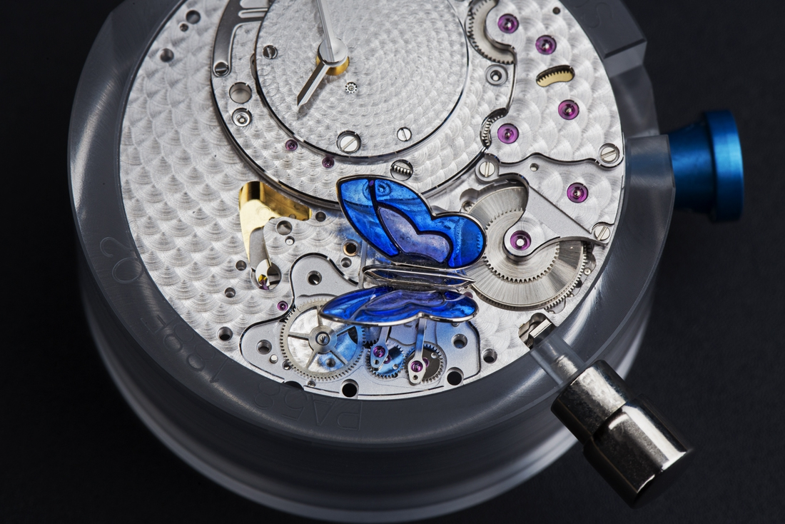 View of the movement with the butterfly