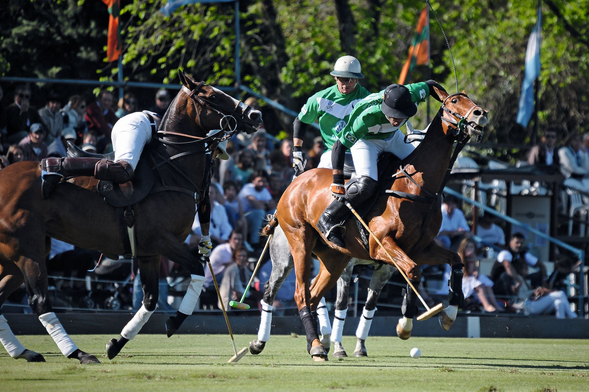 1tony-ramirez_images-of-polo_result