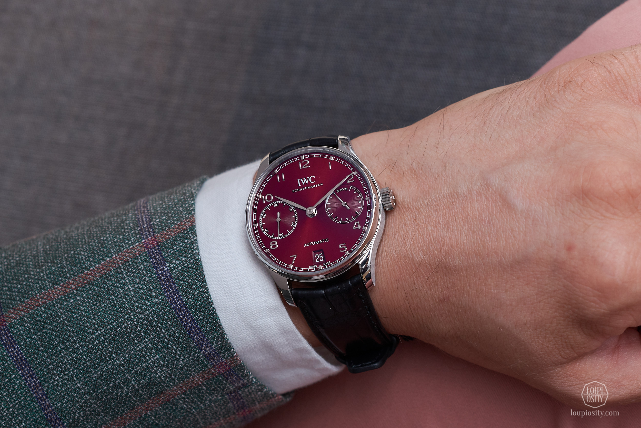 Portugieser Automatic, burgundy dial